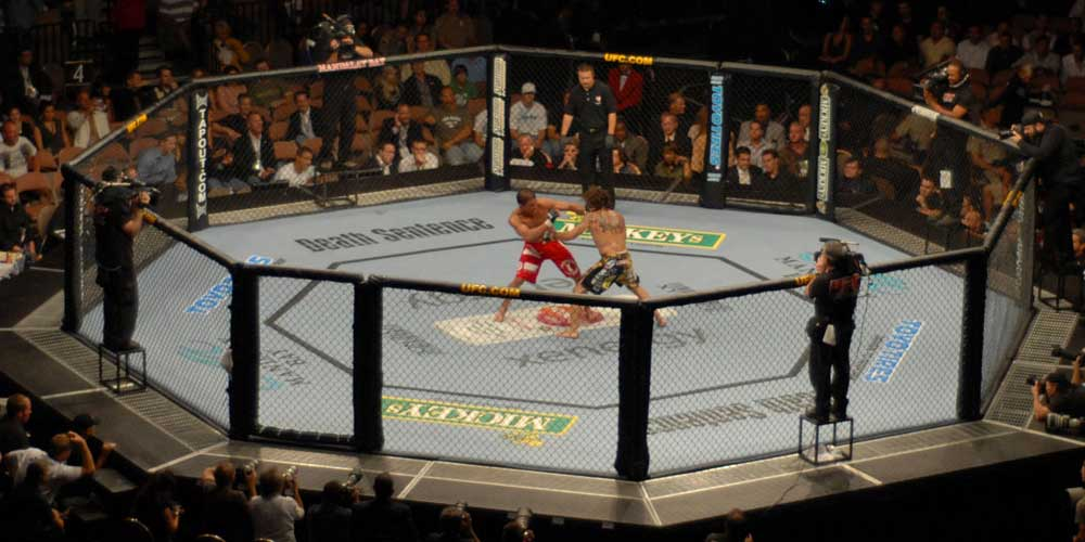 Hemp-Derived CBD Product Research for UFC Athletes